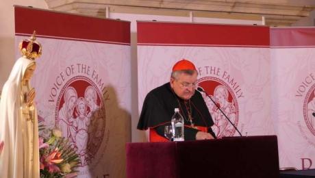 """Kardinal Raymond Burke spricht am Rom-Forum am 19. Mai 2017. Claire Chretien / LifeSiteNews Kardinal Raymond Burke rief katholische Laien an, """"für die Weihe Rußlands für das Unbefleckte Herz Mariens zu arbeiten"""". P1150084_810_500_55_s_c1"""